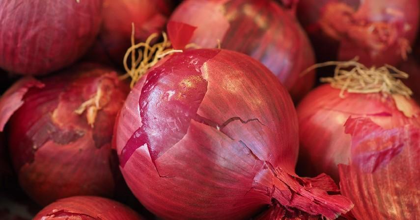 Bawang Merah - 7 Obat Bisul Alami dari Bawang Merah hingga Bubuk Kunyit