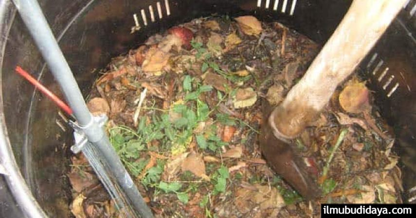 Cara Membuat Pupuk Organik dari Sisa Sampah Rumah Tangga