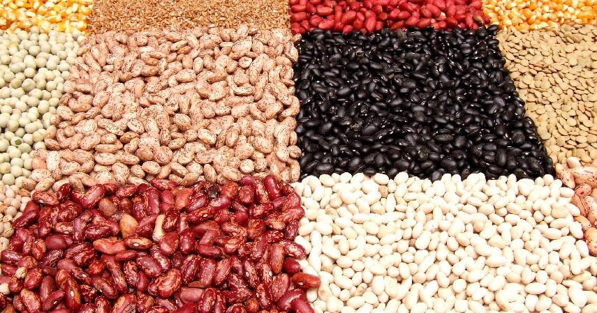 Kacang-kacangan - 12 Makanan untuk Membakar Lemak Bantu Turunkan Berat Badan