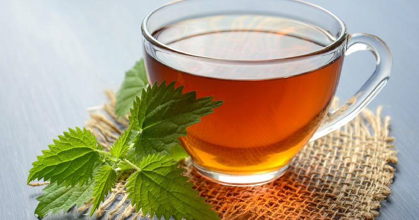Konsumsi teh hijau dan daun mint - 7 Cara Mengatasi Bau Mulut Secara Alami Bikin Percaya Diri Kembali Meningkat