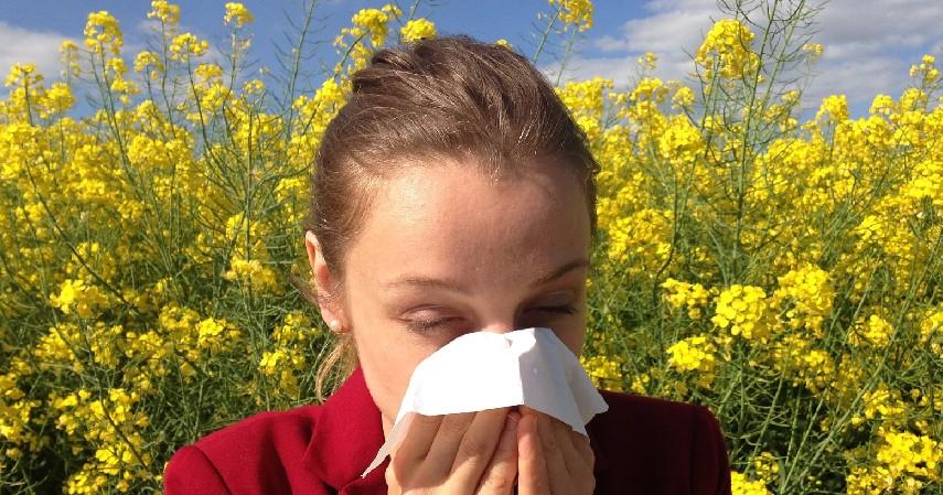 Mencegah Alergi - 7 Manfaat Air Purifier Ini Baik untuk Kesehatan Tubuh