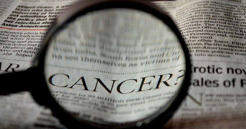 Mencegah Penyakit Kanker - 7 Manfaat Daun Seledri Beserta Cara Seru Mengolahnya