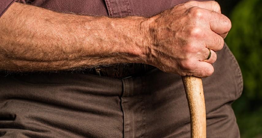 Mencegah Terjadinya Osteoporosis - 10 Manfaat Tahu untuk Kesehatan yang Ampuh Cegah Berbagai Penyakit