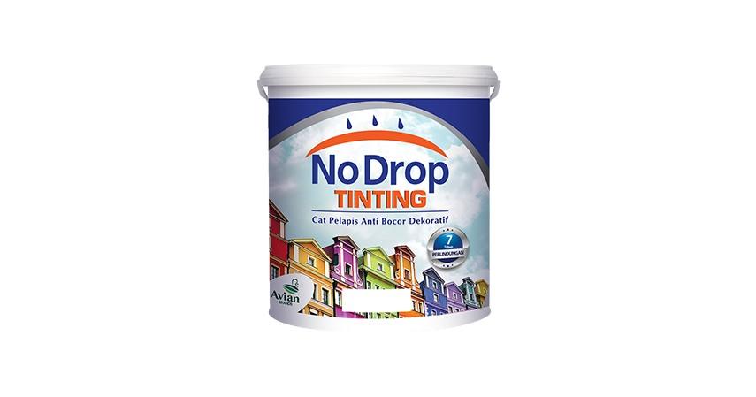No Drop Tinting - 10 Cat Rumah Terbaik dengan Berbagai Formula Canggih