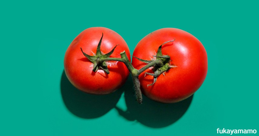 Pestisida Tomat