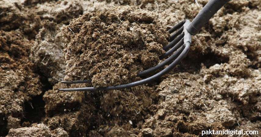 Pupuk kandang - Cara membuat pupuk organik