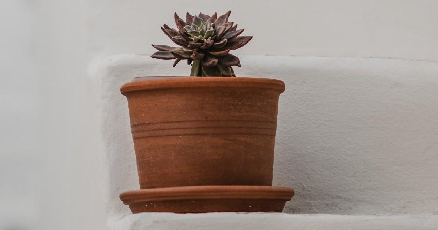 Vas Bunga - 15 Kerajinan dari Kayu Paling Kreatif Unik dan Estetik