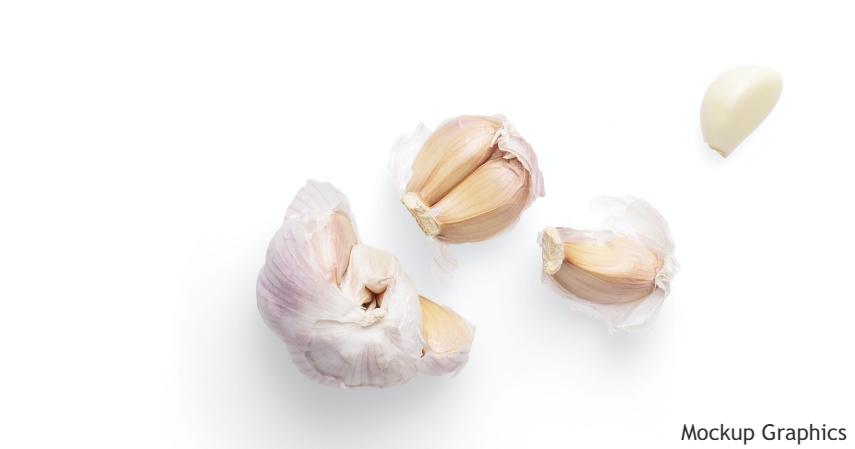 bawang putih Penurun Darah Tinggi