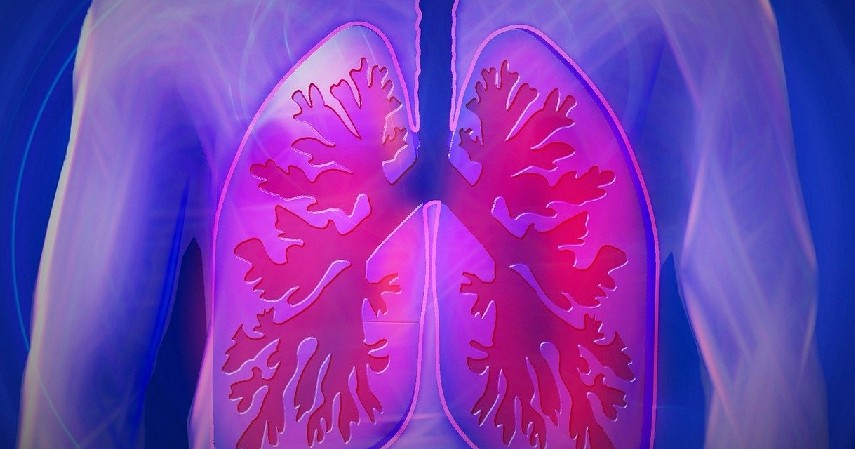 Menurunkan Risiko Kanker Paru-paru - 12 Manfaat Minum Yogurt yang Baik Bagi Kesehatan