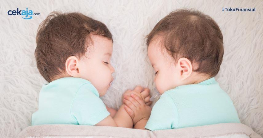 10 Cara Program Hamil Bayi Kembar Ini Efektif dan Terjamin Ampuh!