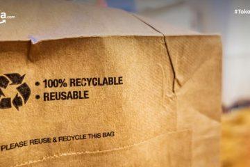 8 Kemasan Ramah Lingkungan Kekinian yang Bikin Produk jadi Estetik