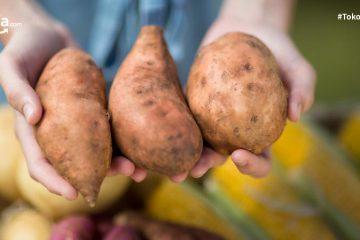 10 Sumber Karbohidrat Selain Nasi Putih yang Pas untuk Diet