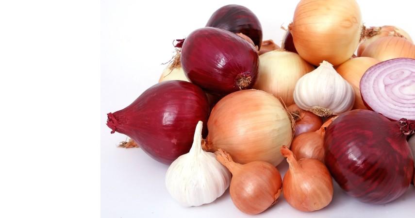 Bawang - 10 Makanan yang Tidak Boleh Masuk Kulkas Beserta Alasannya