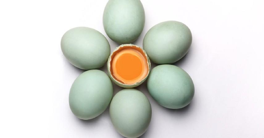 Cuci telur bebek hingga bersih - Cara Membuat Telur Asin dan Peluang Usahanya