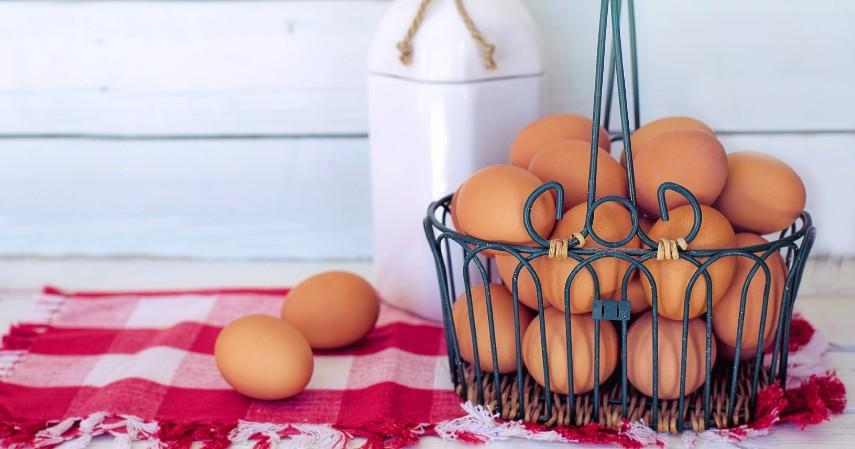 Jumlah Telur yang Aman Dikonsumsi Dalam Sehari - Segini Jumlah Telur yang Aman Dikonsumsi Dalam Sehari