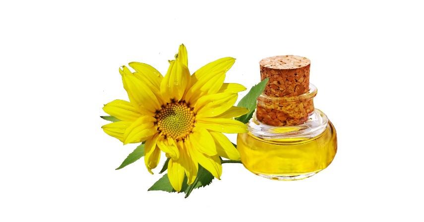 Makanan dengan kandungan Vitamin E - 10 Makanan untuk Meningkatkan Kesuburan Wanita dan Pria Yuk Coba
