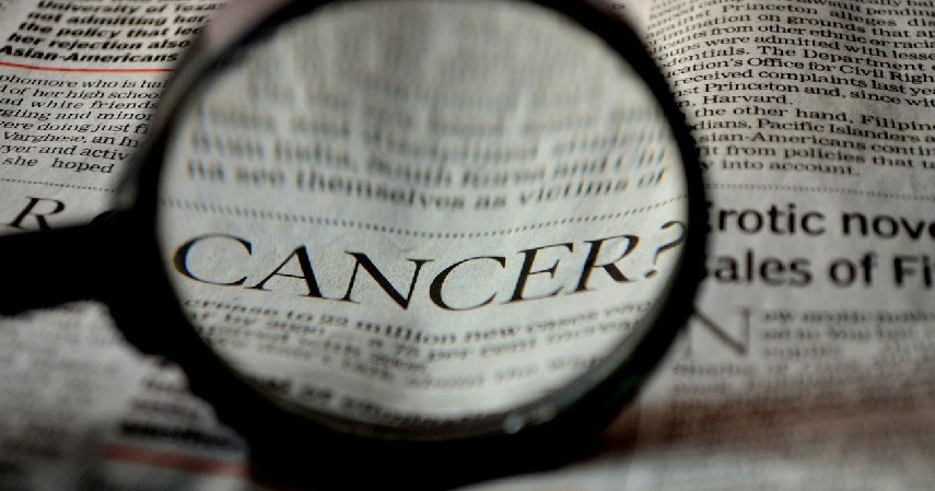 Menjadi Obat Tumor dan Kanker - 7 Manfaat Kayu Bajakah untuk Kesehatan dan Cara Mengonsumsinya