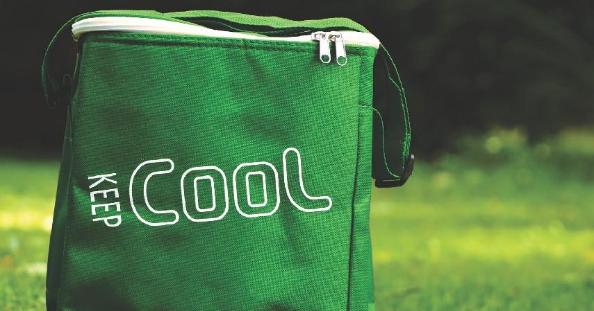 Menyediakan cooler - 8 Cara Simpan Makanan Saat Mati Listrik