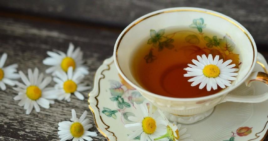Minum teh chamomile - 8 Obat Alami Penurun Panas Anak Para Orangtua Wajib Tahu