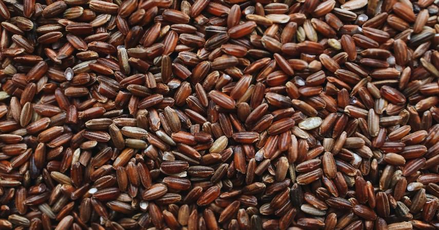 Nasi Merah - 10 Sumber Karbohidrat Selain Nasi Putih yang Pas untuk Diet