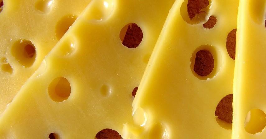 Produk Olahan Susu - 11 Makanan Tinggi Kolesterol yang Patut Dihindari