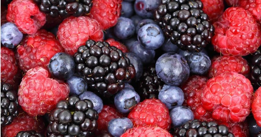 Semua jenis buah berry - 10 Makanan untuk Meningkatkan Kesuburan Wanita dan Pria Yuk Coba