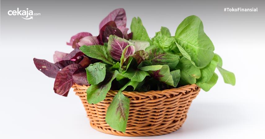 10 Jenis Sayuran Tinggi Protein yang Dibutuhkan oleh Tubuh