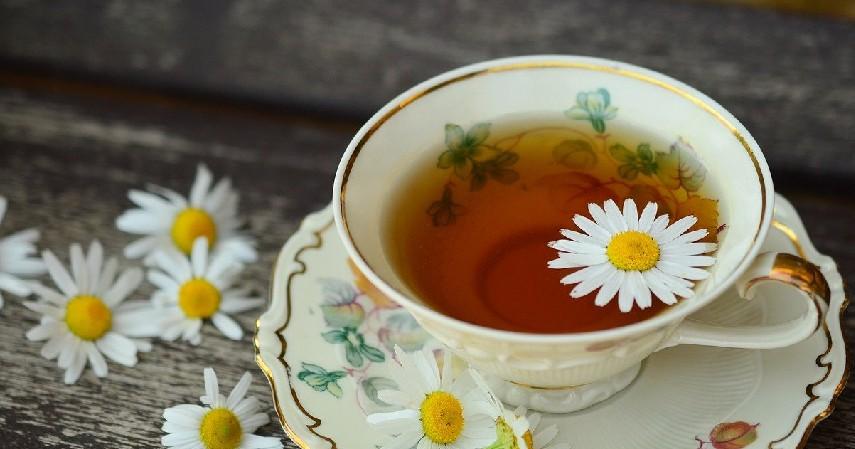 Mengonsumsi teh herbal - 11 Cara Kurangi Makan Berlebih, Ampuh untuk Cegah Obesitas.jpg