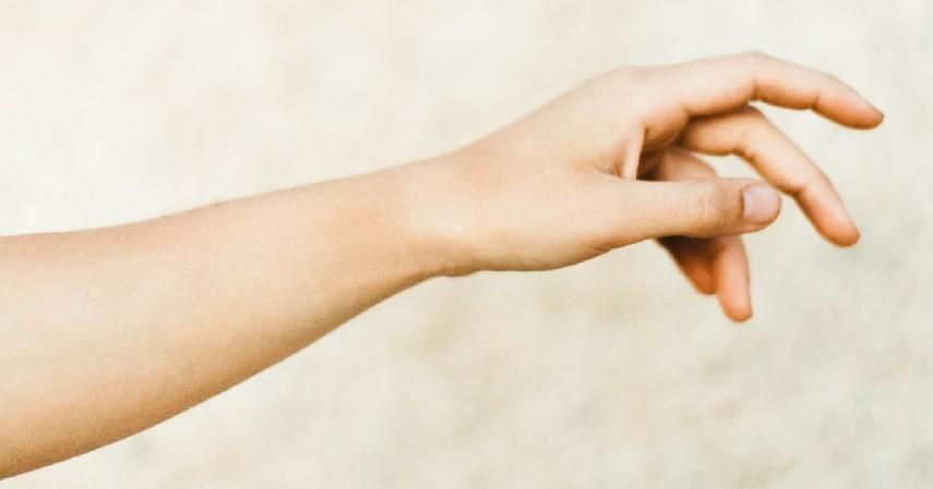 Bermanfaat untuk Kesehatan Kulit - 10 Manfaat Bekicot yang Luar Biasa untuk Kesehatan Tubuh