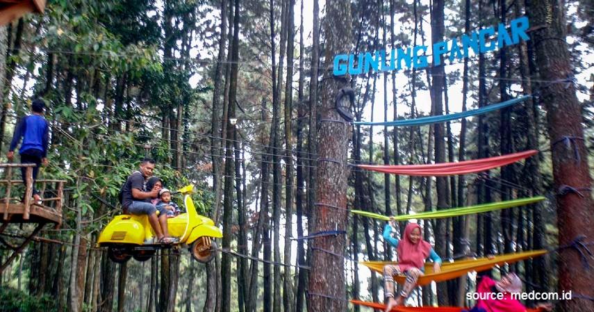 Gunung Pancar - Rekomendasi Tempat Camping di Bogor Paling Hits