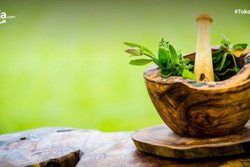 Jenis-jenis Tanaman Herbal yang Aman untuk Bayi, Apa Saja sih?