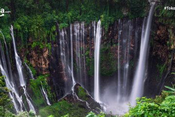 13 Air Terjun Tertinggi di Indonesia, Ada yang Capai 250 Meter!