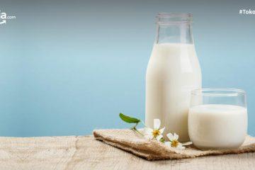 Perbedaan Dairy Milk dan Non-Dairy Milk, Beserta Masing-masing Manfaatnya!