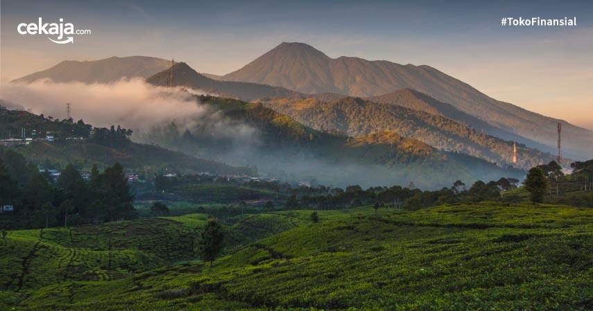 5 Lokasi Piknik di Bogor yang Damai dan Asri!