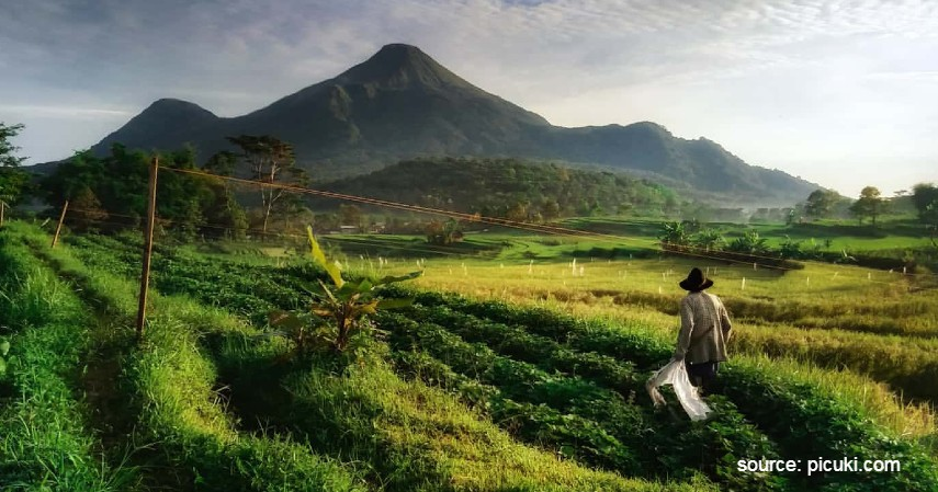 Desa Selotapak - 15 Desa Terbaik di Indonesia, Keindahannya Cocok Jadi Tujuan Wisata.jpg