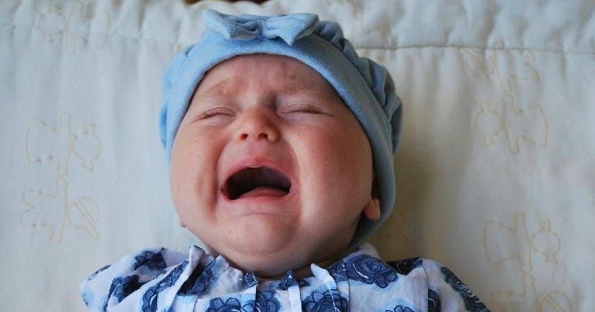Kembalikan kepada sang ibu, jika bayi menangis - 10 Etika Menjenguk Bayi Baru Lahir di Masa Pandemi, Agar Bayi Tetap Aman!.jpg