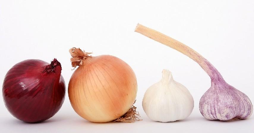 Gunakan bawang merah ataupun bawang putih - 10 Cara Mengusir Tokek di Rumah, Beneran Efektifkah_.jpg