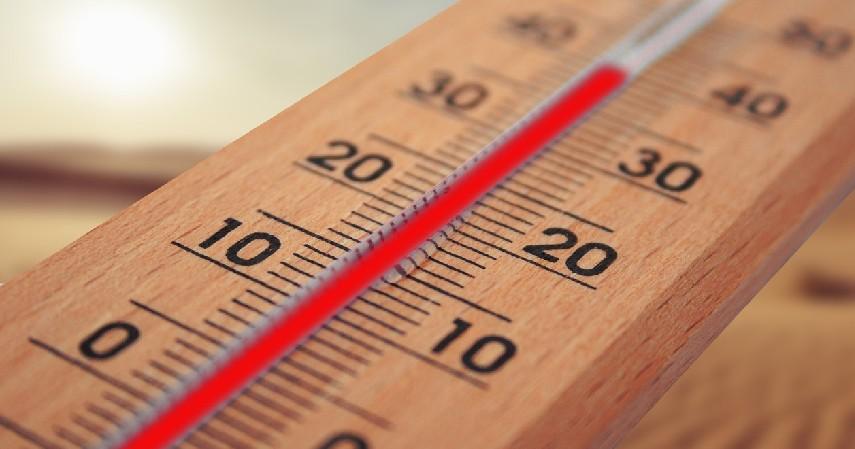 Heat Stroke - 6 Bahaya Meninggalkan Anak Sendiri di Dalam Mobil