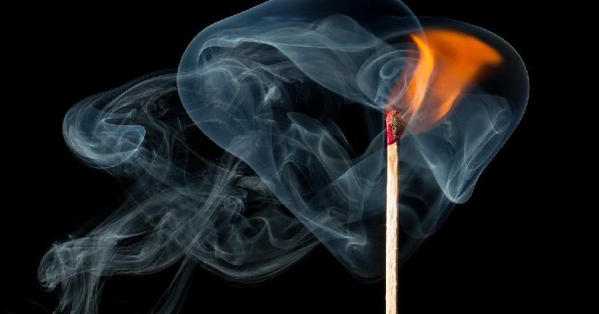 Korek Api Kayu - Ciri Madu Asli dan Jenis Madu di Indonesia Paling Populer