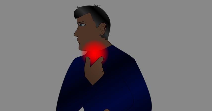 Manfaat Fenugreek untuk Kesehatan - Mengobati Radang dan Infeksi