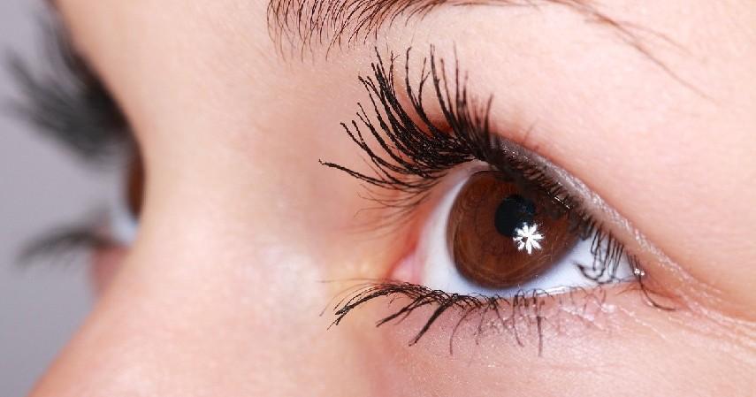 Olahraga Mata - 9 Cara Menjernihkan Mata