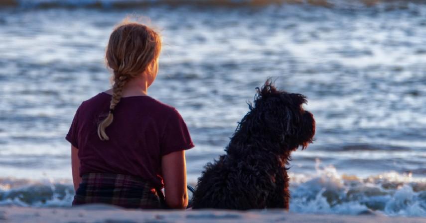 Pilih Anjing Berdasarkan Karakter dan Fungsi - 7 Tips Memilih Anjing Peliharaan untuk Pemula