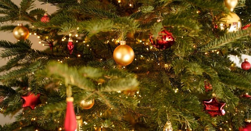 Pinjaman JULO untuk Bisnis Aksesoris Natal - Pohon Natal Mini
