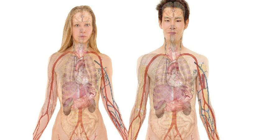 Radang Kandung Kemih - 9 Manfaat Belerang untuk Kesehatan