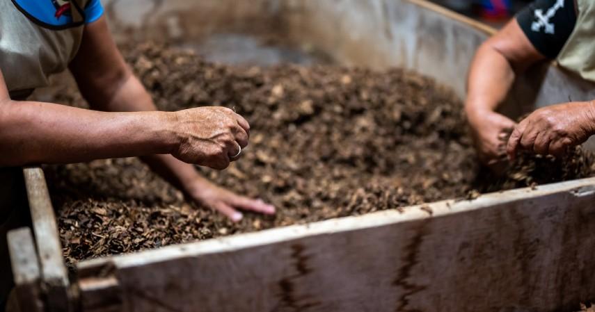 Sukses Budidaya Sayuran Organik dengan Beberapa Tips Berikut Ini - Membuat Kompos Organik Sendiri
