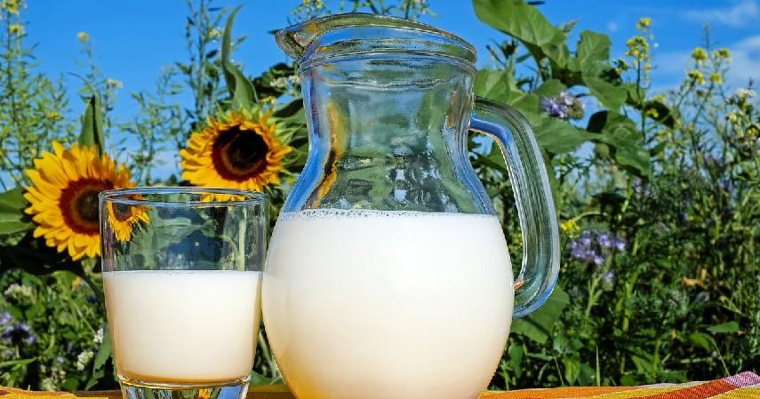 Susu - 9 Makanan Tinggi Kalsium