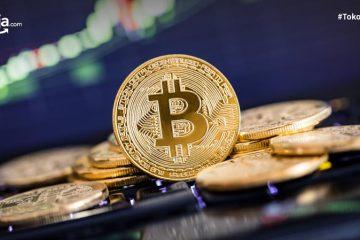 7 Broker Jual Beli Bitcoin Terbaik di Indonesia
