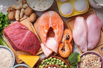 7 Manfaat Protein bagi Tubuh, dari Memberi Energi Hingga Membentuk Antibodi