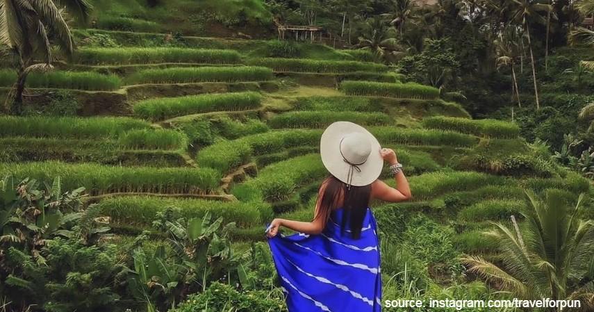 Sawah Tegalalang Bali - 5 Alternatif Agrowisata Saat Liburan Akhir Tahun 2020