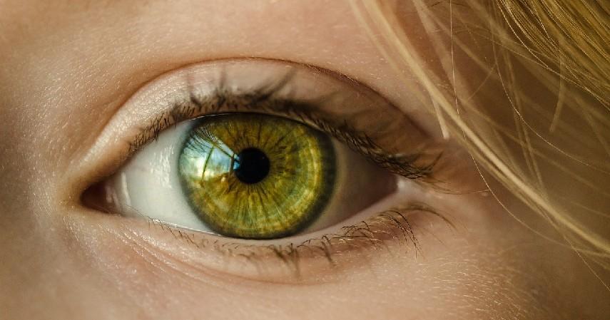Terapi mata - 8 Cara Mengobati Mata Silinder